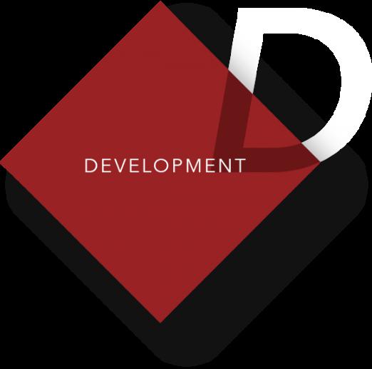 Macrison Development Services